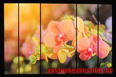 Falra akasztható egyedi #vászonképek profi minőségben 👉 www.vaszonkepkeszites.hu #vászonkép #canvas #photo #photos #homedecor #homedecoration #virág #flower Pho, Plants, Home Decor, Decoration Home, Room Decor, Plant, Home Interior Design, Planets, Home Decoration