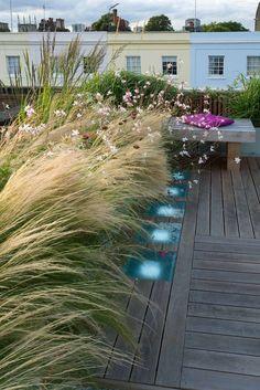 Toit-terrasse : bois et graminées (Charlotte Rowe, Holland Park, Londres)