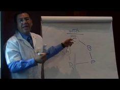 Auriculoterapia Puntos para Hipertension Arterial - YouTube