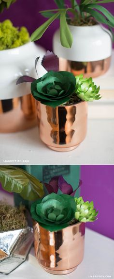 These DIY paper succulents are wonderful for anyone new to DIY and papercrafting, and at the end of your project you will have adorable botanicals to use . Paper Flower Patterns, Paper Flowers Craft, Flower Crafts, Paper Crafts, Origami Flowers, Flower Garlands, How To Make Diy, How To Make Paper, Paper Succulents