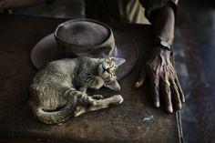 Sleep | Steve McCurry