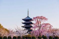 78 Best 日本が大好き Images Japan Travel Asia Japanese Architecture