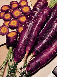 Purple Dragon Carrot - Seeds and Plants at Cooksgarden.com