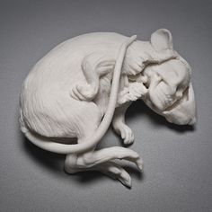 PORCELAIN SCULPTURE by Kate MacDowell Ceramic Design, Ceramic Art, Porcelain Ceramics, Animal Sculptures, Lion Sculpture, Sculpture Ideas, Soft Sculpture, Kate Macdowell, Art In The Age