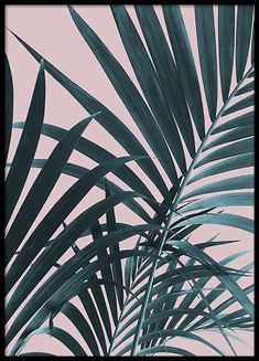 Pastel Palm No1 Poster in the group Prints / Sizes / 50x70cm | 20x28 at Desenio AB (10388)