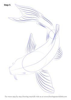 Koi Fish belongs tot he C. In this tutorial, we will draw Koi Fish. Koy Fish Drawing, Fish Drawings, Art Drawings Sketches, Koi Art, Fish Art, Koi Kunst, Koi Painting, Ocean Paintings, Mermaid Paintings