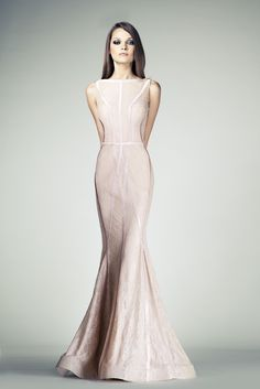 Tony Ward RTW SS14 I Style 09 I Blush Mermaid cut evening dress made of Lace featuring lines of embroidered Silk band appliques