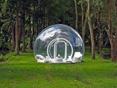 Live in the bubble
