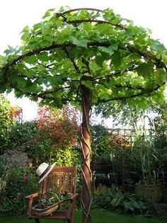 Greenery shaped into a Pergola. 25 Beautifully Inspiring DIY Backyard Pergola Designs For Outdoor Enterntaining usefuldiyproject pergola design Dream Garden, Garden Art, Home And Garden, Garden Whimsy, Easy Garden, Cool Garden Ideas, Garden Plants, Garden Oasis, Terrace Garden