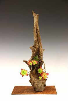 Kusamono bonsái