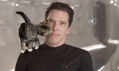 And this one who's after a kiss.   19 Very Important Photos Of Benedict Cumberbatch With Kittens