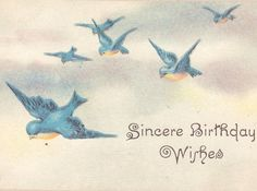 vintage bluebird clipart | bluebird | Birds in Art | Pinterest