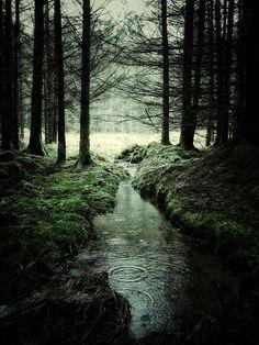 Photographie réalisée avec un iPhone d'un paysage écossais situé entre Glen Orchy et Glen Etive composée d'un cours d'eau.