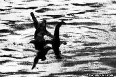 Bigfoot riding Nessie.