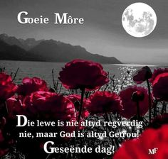 Lekker Dag, Goeie More, Afrikaans Quotes, Good Morning Wishes, Cool Pictures, God, Movie Posters, Sayings, Nice