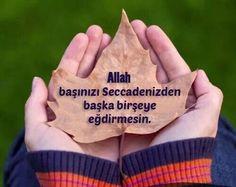 Allah basinizi seccadenizden baska hicbirseye egdirmesin..