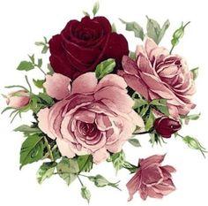 ROSAS ROSAS E VINHO Decoupage Vintage, Decoupage Paper, Flower Images, Flower Art, Decoupage Printables, Botanical Flowers, Hand Embroidery Designs, Flower Wallpaper, Vintage Flowers