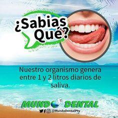 Apuesto a que no sabías esto de tu boca! . Y como en #MundoDentalPty no solo te brindamos conociendo aprovecha nuestras #PromosDeVerano Están en sus últimos días! . >>>Amamos el #Verano  . #Panama #DentistaEnPanama #DescuentosPanama #Sonrisas
