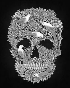 Birds and skulls. Win!