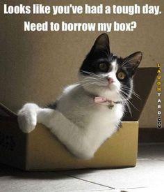 Need to borrow my box