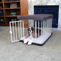 @Overstock - The 3-in-1 Combi Crate Medium is a crate, 80 inch wide pet gate, free standing barrier and play yard. Ideal for home, travel and training. Airline approved. Folds into its frame, including rolling wheels and handel. For pets up to 35 pounds.http://www.overstock.com/Pet-Supplies/Carlson-3-in-1-Medium-Combi-Crate/7357071/product.html?CID=214117 $114.99