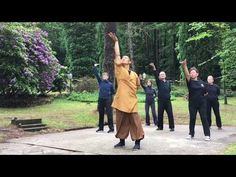 Complete Routine of Shaolin Yi Jin Jing 易筋經 performed by Shi Heng Yi 释恒義 and students in June 2017 at the Shaolin Temple Europe 歐洲少林寺 located in Otterberg / . Qi Gong, Shaolin Kung Fu, Tai Chi Movements, Karate, Tai Chi Exercise, 12 Week Workout, Thai Chi, Tai Chi Qigong, Chinese Medicine