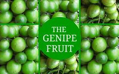 TASTY INCREDIBLE BENEFITS OF THE GENIPE FRUIT