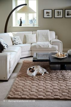 Main Colors, Colours, Pink Rugs, Wool Rugs, Types Of Rugs, Basket Weaving, Blush Pink, Weave, Area Rugs
