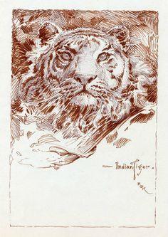 Dave Karlen Original Art Blog: The Art of Roy G. Krenkel