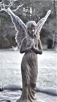 ice spangled angel