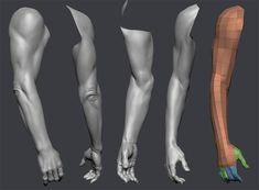 Стена Zbrush Anatomy, Arm Anatomy, Human Body Anatomy, Anatomy Art, Anatomy Study, Human Poses Reference, Body Reference, Anatomy Reference, Anatomy Sketches