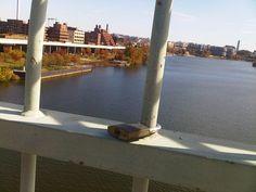 Candado en Key Bridge