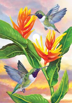 Black Chinned Hummingbirds And Golden Heliconia by Rosiland Solomon