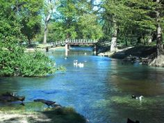 Nestled in the midst of historic New Braunfels, Texas is a beautiful Hill Country oasis known as Landa Park. Great Places, Places To See, Beautiful Places, Beautiful Park, Texas Roadtrip, Texas Travel, New Braunfels Texas, Guadalupe River, Texas Usa