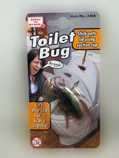 Toilet Cockroach