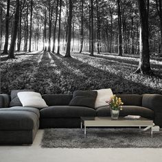 Photo Wallpaper FOREST WOOD TREES LANDSCAPE  BLACK & WHITE Wall Mural (2229VE)