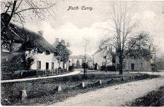 North Curry, Somerset, c1905. Some of my ancestors were from North Curry - if you're researching the Denman, Broom or Baskett families, do get in touch! esjones <at> btopenworld.com