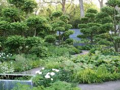 Beautiful planting by Tom Stuart-Smith for Laurent-Perrier garden at Chelsea Flower Show 2008