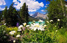 Emerald Lake, Banff, Canada
