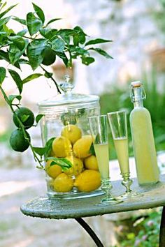 limoncello...great web site...all in French! Google translate is helpful!