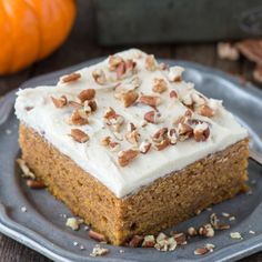 Easy to make pumpkin sheet cake made in a 9×13 inch pan with homemade butter pecan frosting!