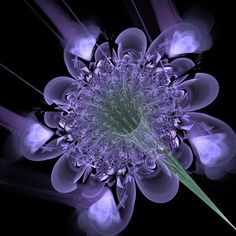 This image shows a flower/plant shining and detailed on a dark background. I chose this image because i liked how each fragment seemed symmetrical to the next and the sense of planning and purpose it had. I will use this image to develop my ideas by using its sense of purpose to drive me to create my own work with a purpose.