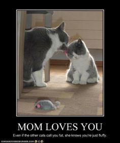 Funny Pins Photos Image Pictureshare Or Repin It Or On G Or