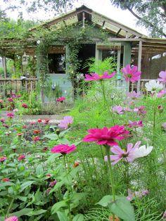 Jardin simple avec cabane, comme je les aime.
