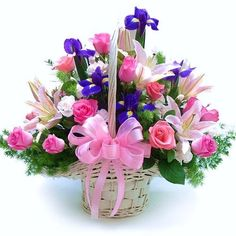 Singapore florist, local flower shop arrange flowers for all occasion, order varieties of flowers basket arrangement online, same day delivery in Sinagpore. Basket Flower Arrangements, Beautiful Flower Arrangements, Floral Arrangements, Iris Flowers, Faux Flowers, Summer Centerpieces, Mother Birthday, Morning Flowers, Flower Quotes