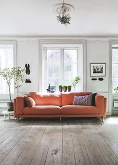 Oranje Boven - Afbeelding 7.png
