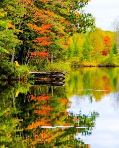 Fall in Michigan is a photographer's paradise! Last month, our Pure Michigan Instagram community perfectly captured the beauty of the autumn season. From sunrises to road trips, here are a few favorites shared with us in October.