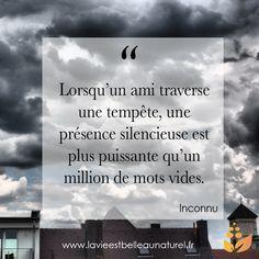 """""""Lorsqu'un ami traverse une tempête, une présence silencieuse est plus puissante qu'un million de mots vides."""" Inconnu Pour plus de citations rendez-vous sur : www.lavieestbelleaunaturel.com"""