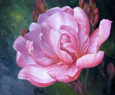 Marianne Broome Marianne Broome was born in E. Art Floral, Peony Flower, Flower Art, Watercolor Flowers, Watercolor Paintings, White Iris, Red Tree, China Painting, Painting Inspiration