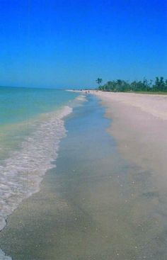 Beach on Sanibel Island, Florida. A place known for beautiful sea shells. The best time to find them is right after a storm. I hope to visit Sanibel! Vacation Destinations, Vacation Spots, Vacations, Captiva Island, Island Beach, Great Places, Beautiful Places, Sunshine State, Beach Scenes